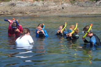 Snorkel safari with children at Wembury