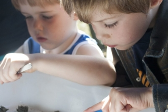 Children examining owl pellets
