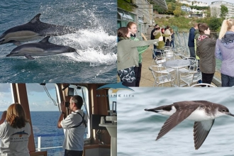 Marine Mammal & Seabird Surveyor Training Course