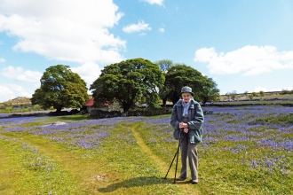Woman stood in field of bluebells