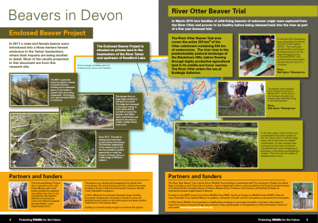 A summary of initial findings from the Devon Beaver Projects screen shot