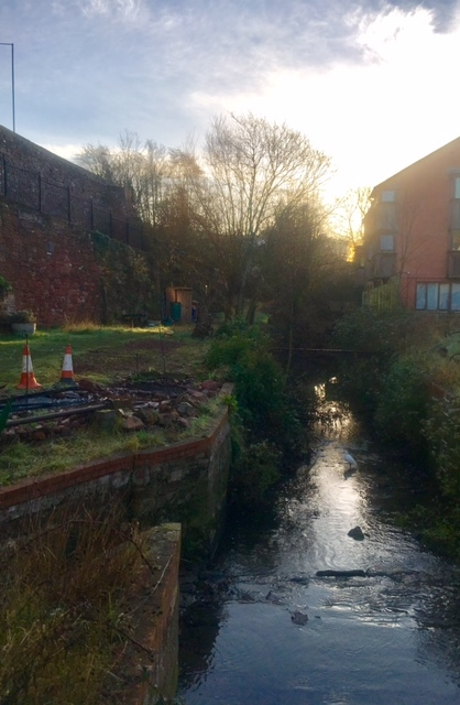 Cricklepit Mill leat at sunrise