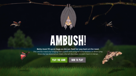Devon Greater Horseshoe Bat Project ambush game screenshot
