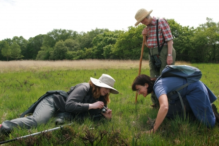 People surveying at Dunsdon nature reserves