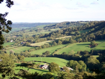 East Devon landscape
