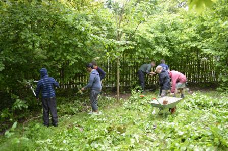 School children creating wildlife friendly school grounds