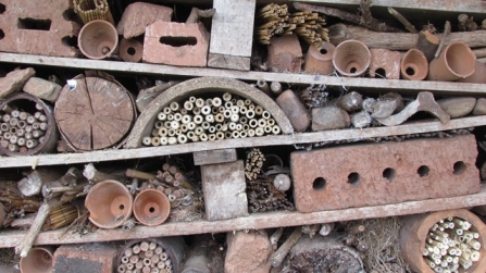 Bug hotel in the Cricklepit wildlife garden