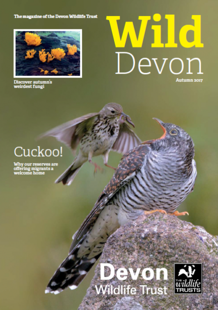 Autumn 2017 edition of Wild Devon