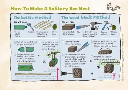 How to make a solitary bee nest activity sheet