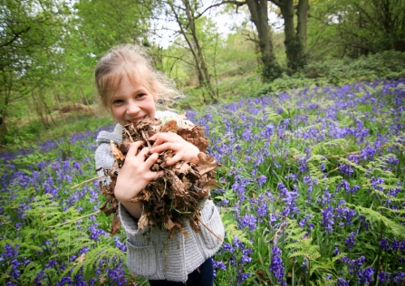 Happy child gathering leaves in a bluebell wood