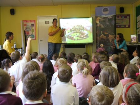 Cat Andrew's gives a talk to a school on Wembury Marine Centre