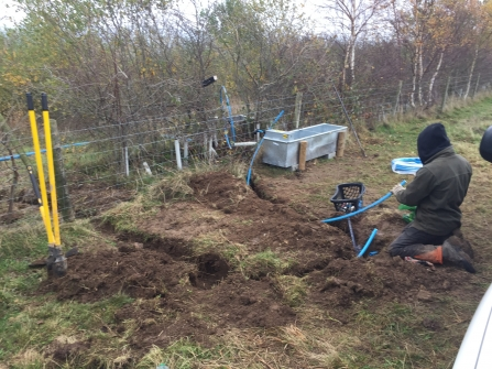 Installing water supply for cattle at Teigngrace Meadow