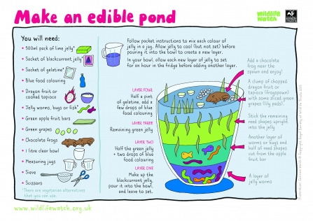 edible pond