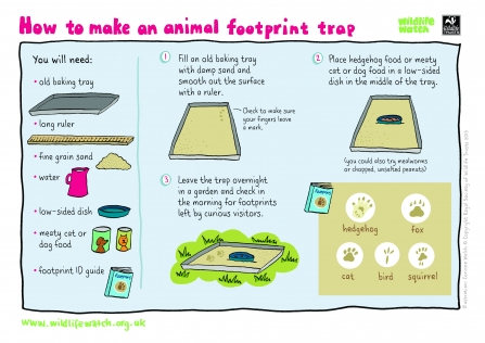 footprint trap