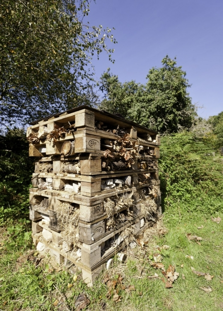 Bug hotel made out of old pallets
