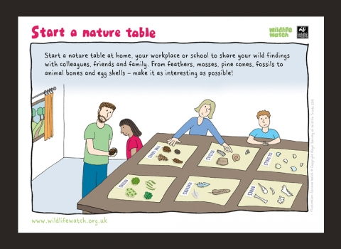 Start making a nature table
