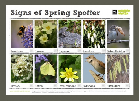 DWT signs of Spring spotter sheet