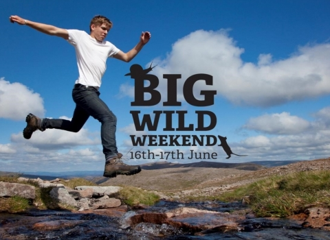 Leaping into the Big Wild Weekend